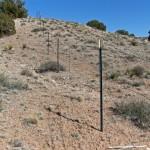 Unacceptable: Rolled Livestock Fencing (no barbs)